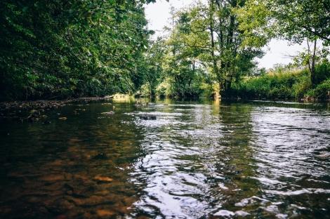 Viroin river.